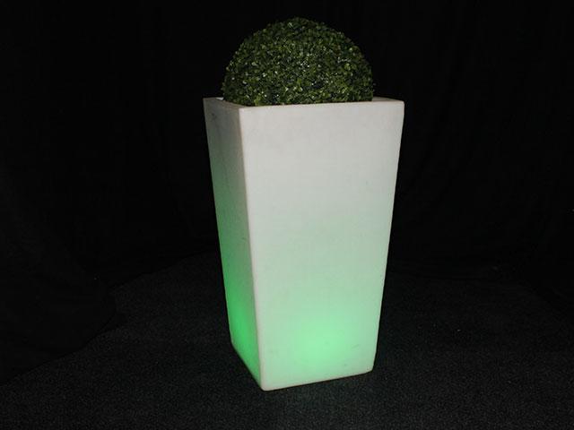 LED bloempotten met buxus